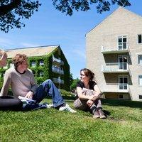 Aarhus Kommunes jobcenter rykker ind på Aarhus Universitet på Faculty of Arts tre gange om ugen.