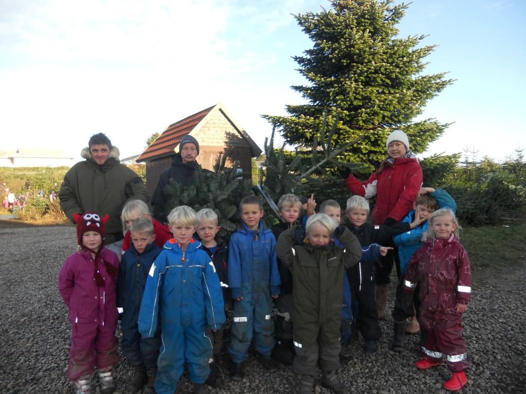 De ældste børn i Delfinhuset var i år med til at hente institutionens juletræer. Foto: Delfinhuset.